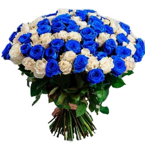 фото букета 101 біла і синя троянда (фарбована)