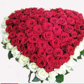фото 101 троянда серце: червона та біла