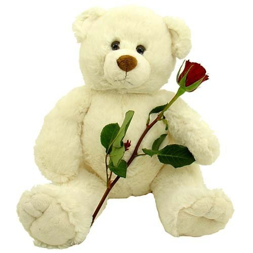Мішка з трояндою і цукерками фото