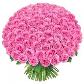 101 троянда аква