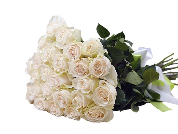 25 білих троянд фото