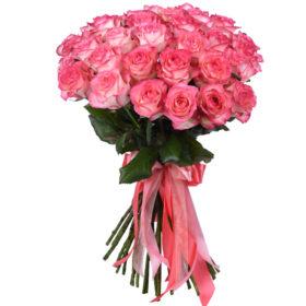 троянди 33 джумілії
