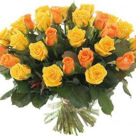 51 жовта і персикова троянда фото