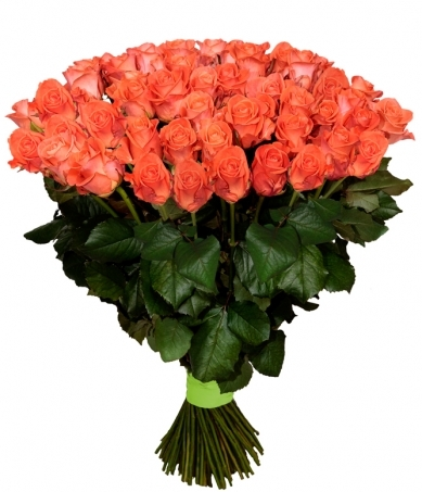 100 троянд вау