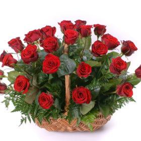 35 червоних троянд в кошику фото