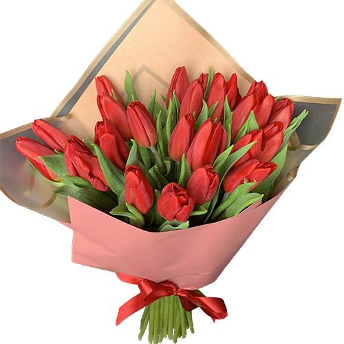 букет 25 червоних тюльпанів