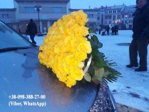 фото квіти
