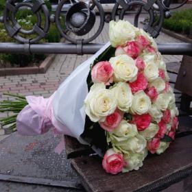 51 біла і рожева троянда