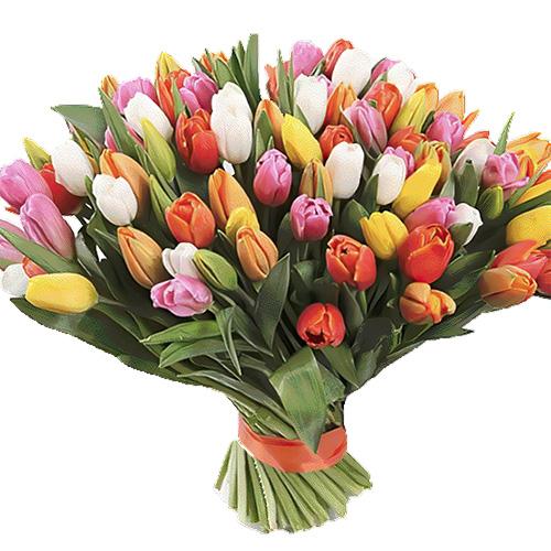 101 різнокольоровий тюльпан фото букета