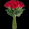 вісокі троянди