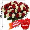 акціний букет 101 троянда мікс червона і біла (50 см) фото