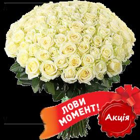 акционное предложение 101 белая роза