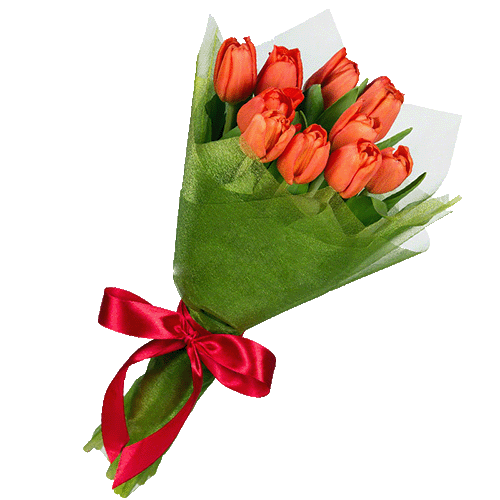 букет з доставкою 11 червоних тюльпанів