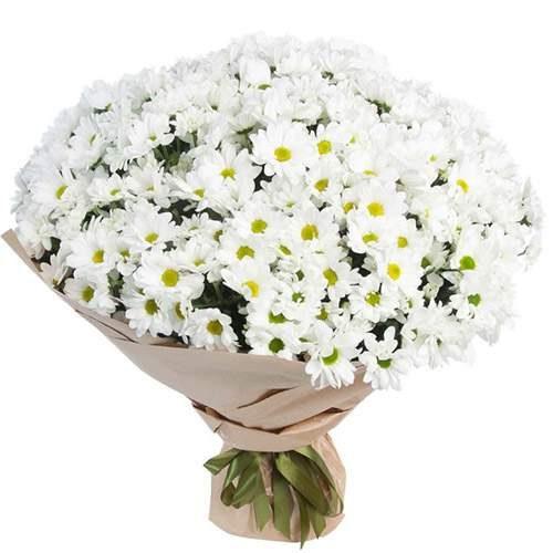 фото букета 51 ромашкова хризантема