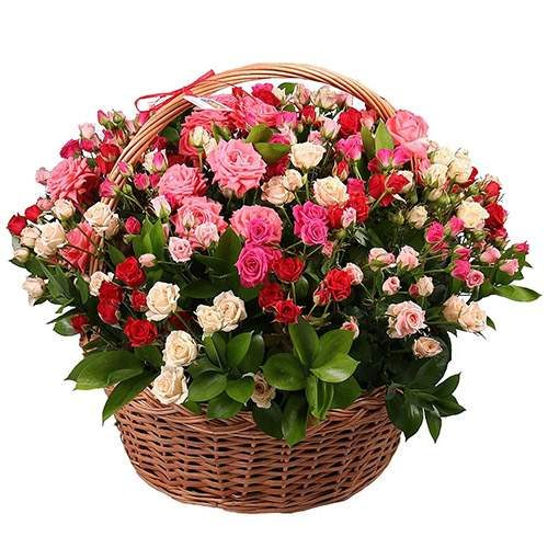 фотографія букета 101 кущова троянда в кошику