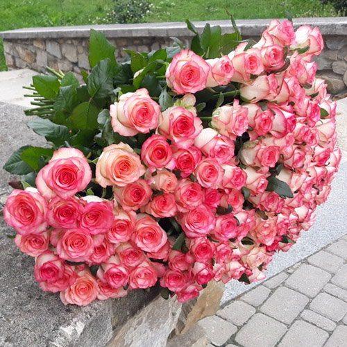 """фото букета 101 троянда """"Джумілія"""""""