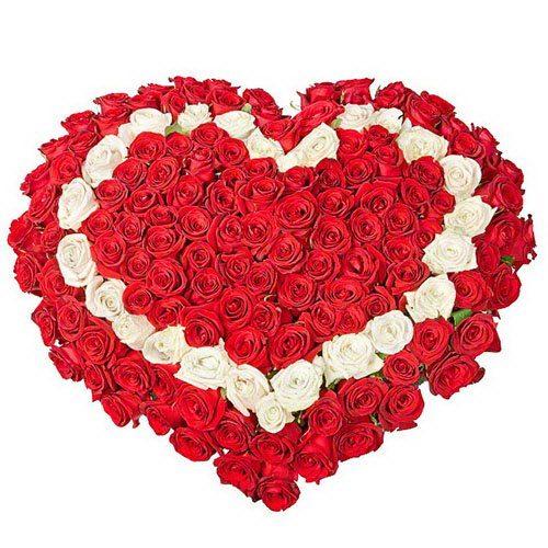 фото товару 101 троянда серцем: червона, біла, червона