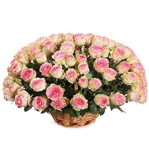 букет 101 рожева троянда в кошику фото