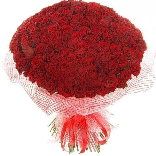 букет 201 червона троянда фото товару