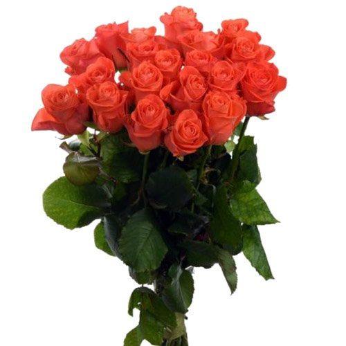 "фото товару 21 троянда ""Вау"""
