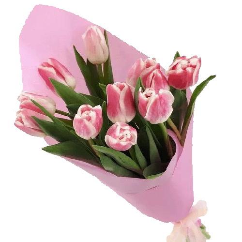 замовлення букета 11 рожевих тюльпанів