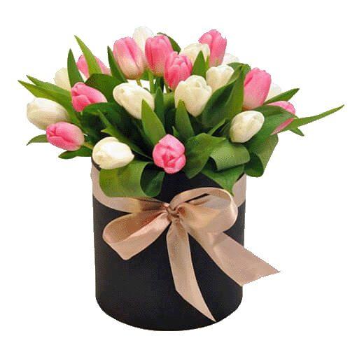 букет з доставкою 25 тюльпанів у капелюшній коробці