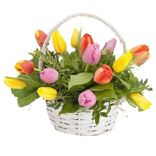 фото букета 15 тюльпанів у кошику