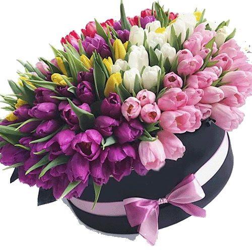 фото 151 тюльпан у капелюшній коробці з доставкою франківськ