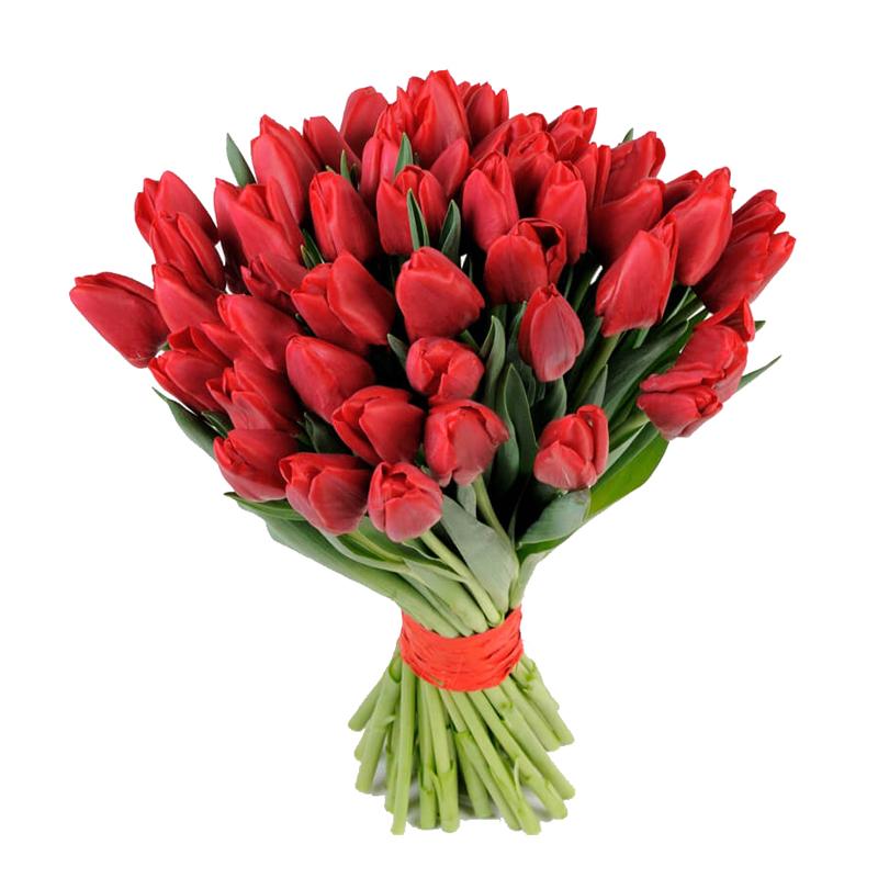 фото букета 49 червоних тюльпанів