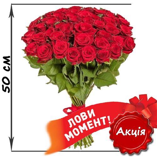 акційний букет 51 червона троянда (50см) фото