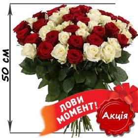 фото 51 троянда мікс червона і біла (50 см)