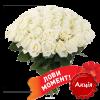 акционное предложение 51 белая роза