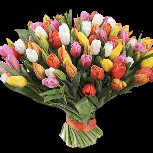 букет 99 різнокольорових тюльпанів