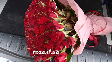 картинка троянди Івано-Франківськ