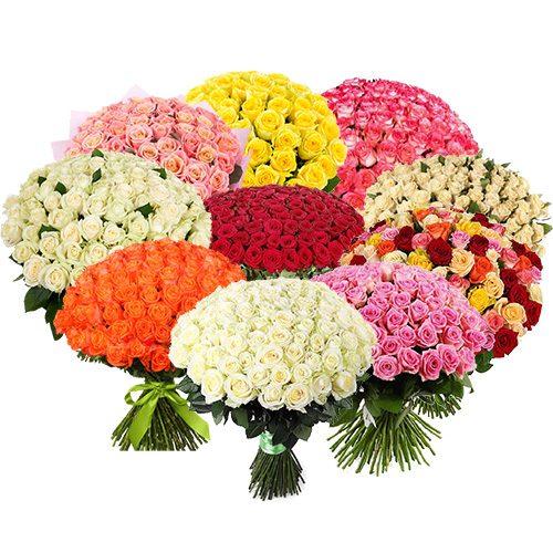 товар 1001 троянда різних сортів